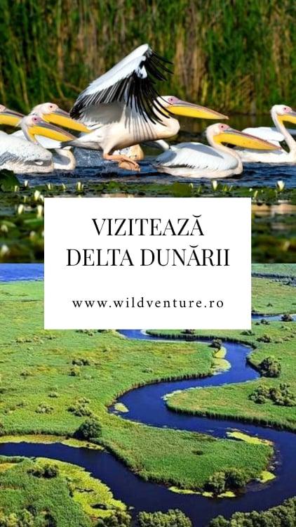 viziteaza delta dunarii