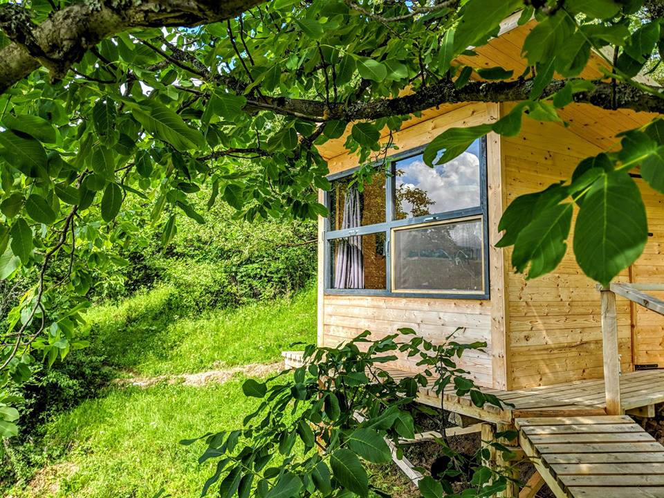cazare casuta in copac tree cottage