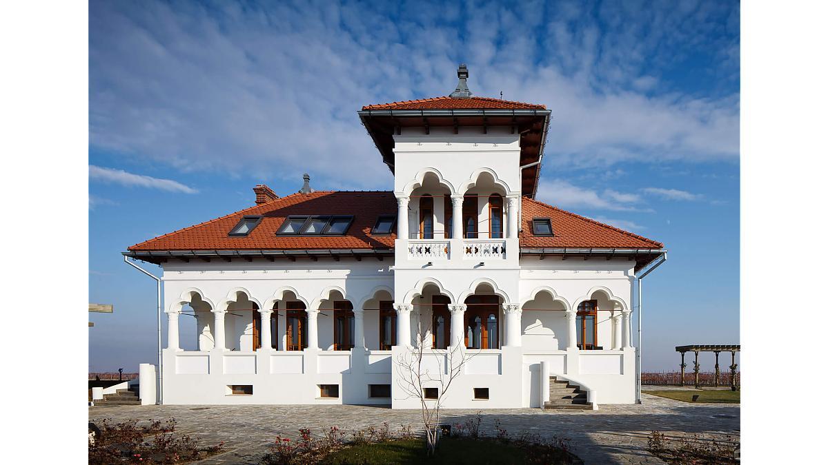 domeniul vila dobrusa