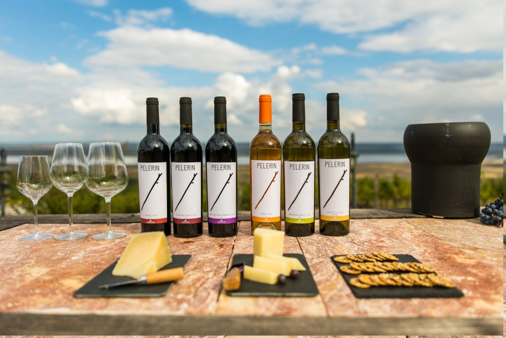 degustare vinuri dragasani