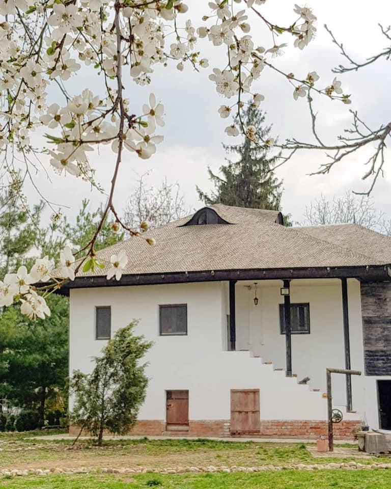 conacul serghiescu