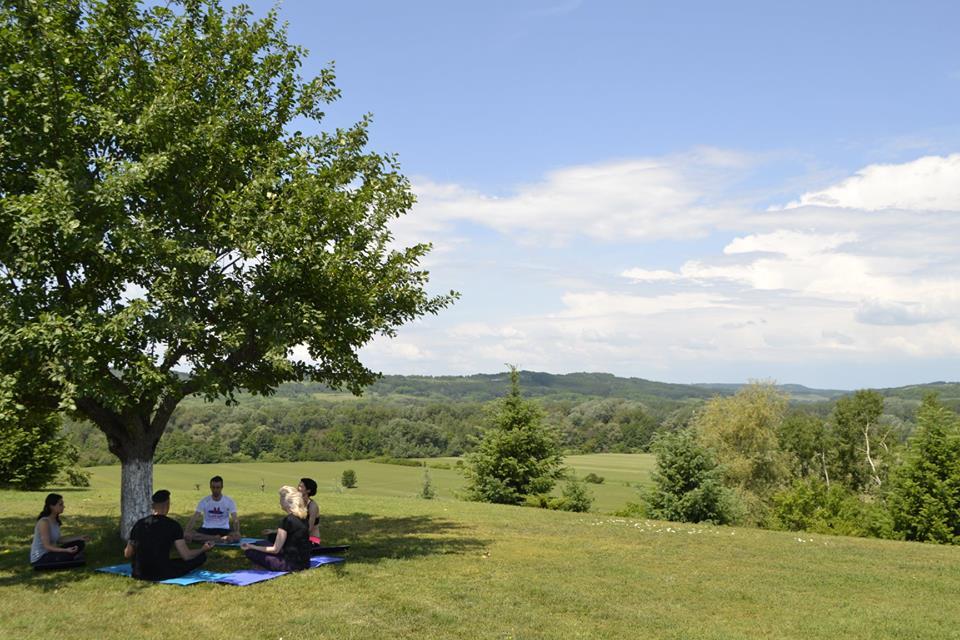 forest retreat & spa yoga